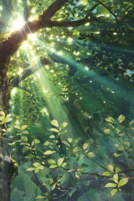 lumiere-arbre
